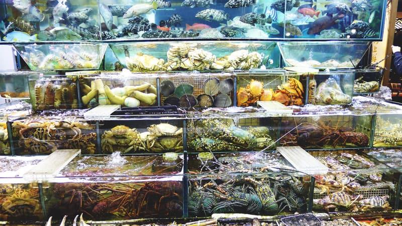 Sai Kung Seafood Restaurant Michelin
