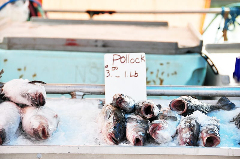 Summer Fishing Fish Market Instanomss Nomss Delicious Food Photography Healthy Travel Lifestyle Canada