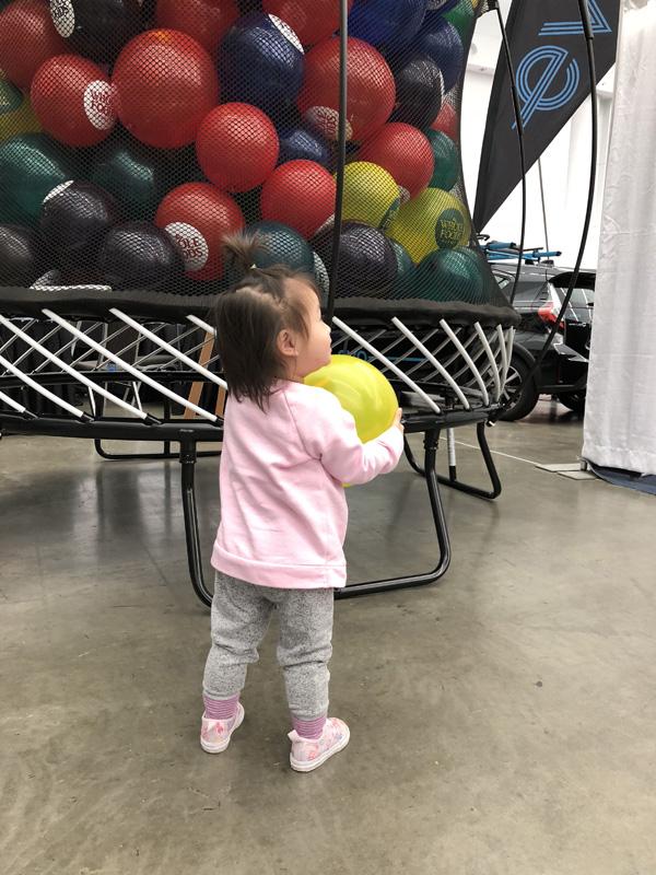 HEALTHY FAMILY EXPO HFE 2019 Nomss.com