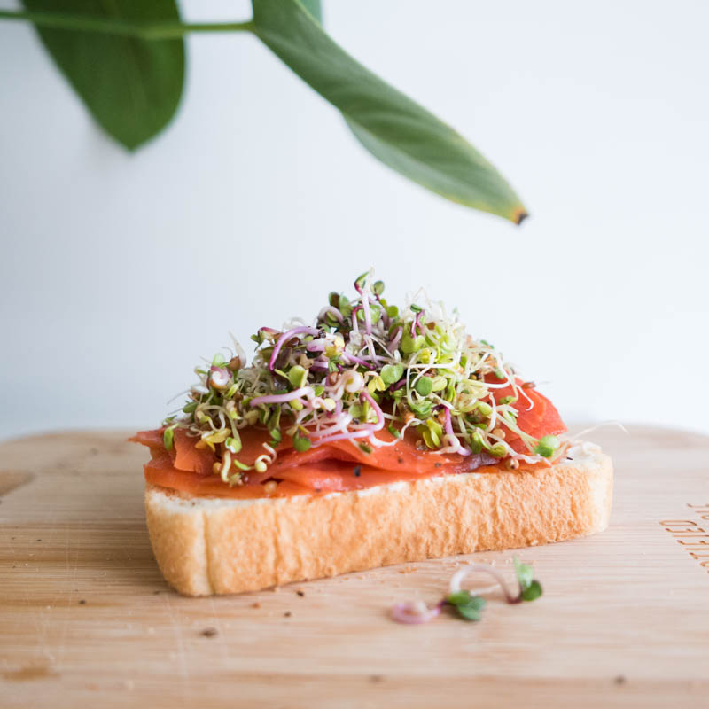 OPEN FACE Smoked Salmon cream cheese Sprouts Sandwich