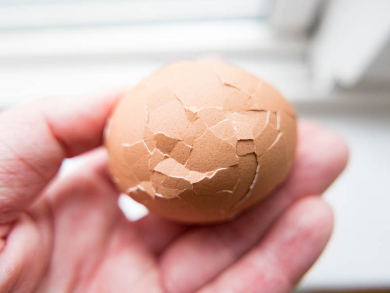 cracked eggs
