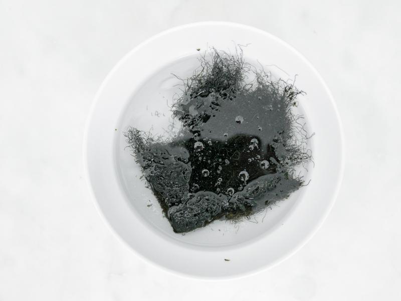 black moss  髮菜